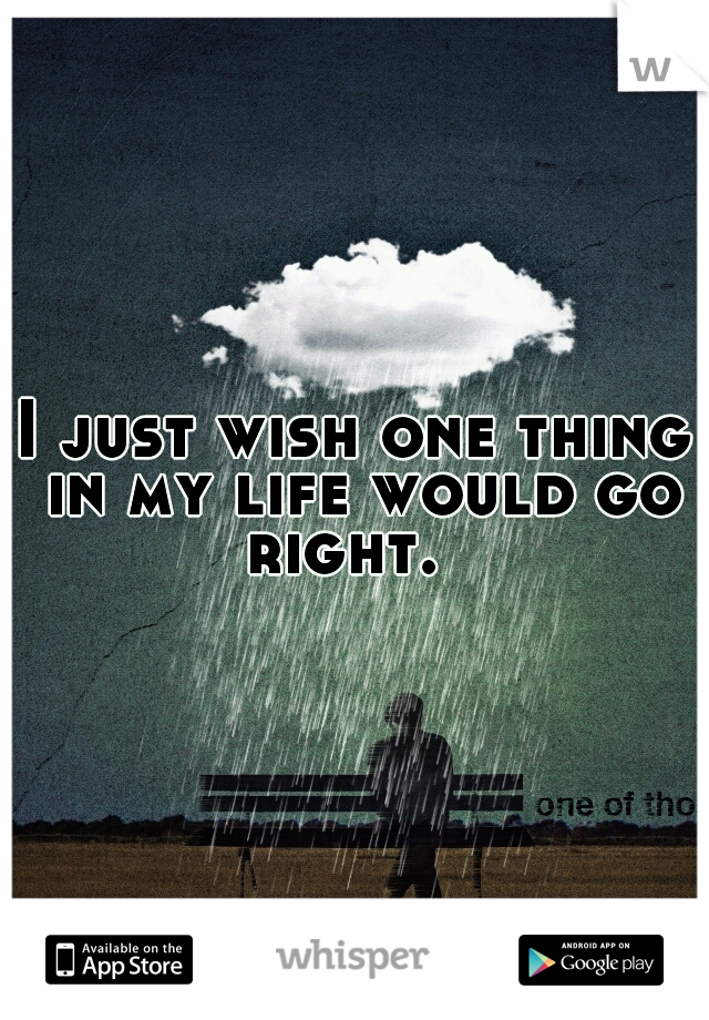I just wish one thing in my life would go right.