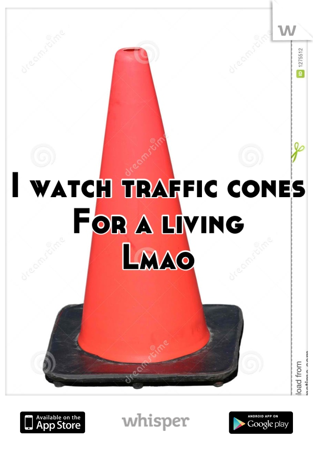 I watch traffic cones For a living  Lmao