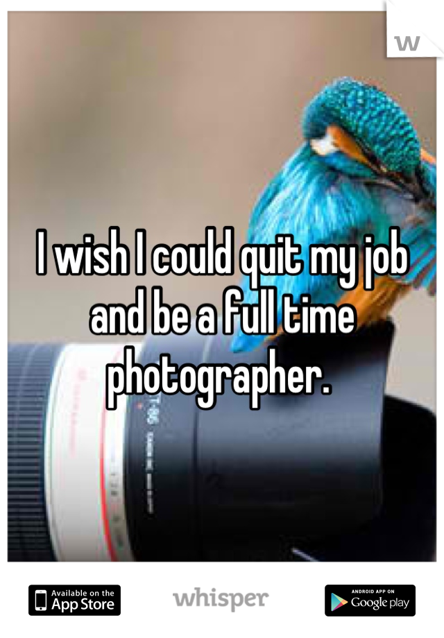 I wish I could quit my job and be a full time photographer.