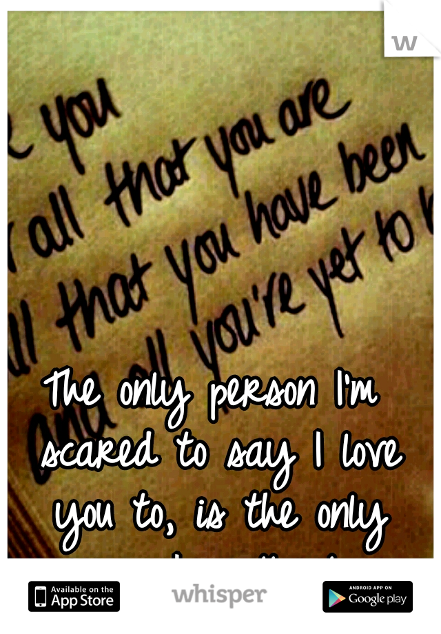 The only person I'm scared to say I love you to, is the only person I really love.