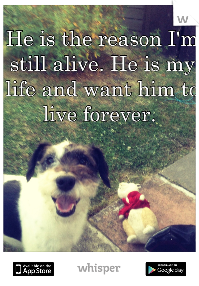 He is the reason I'm still alive. He is my life and want him to live forever.