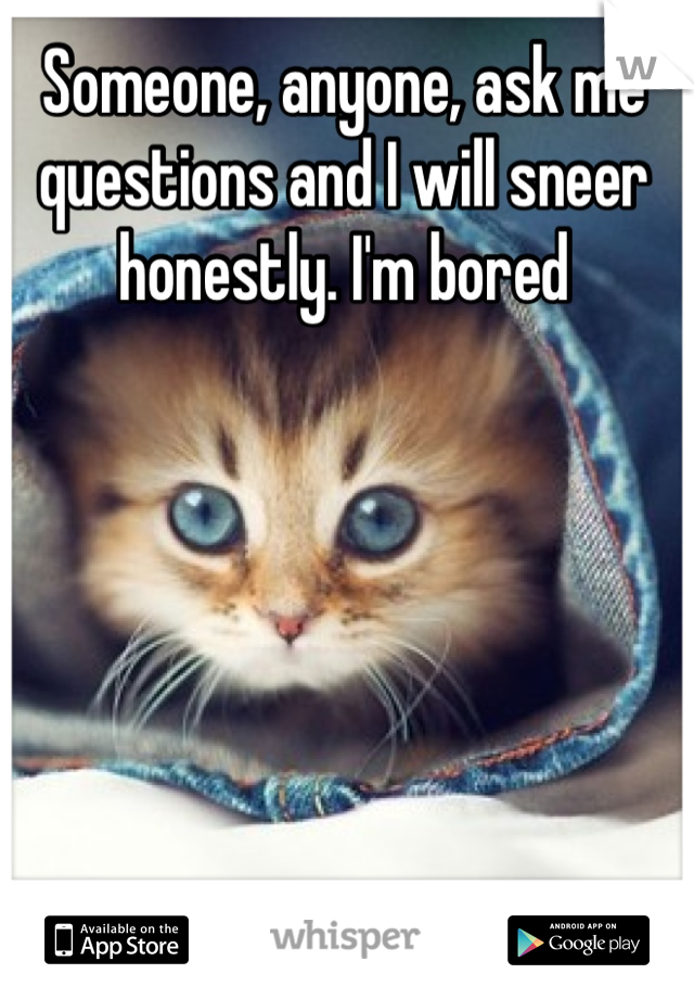 Someone, anyone, ask me questions and I will sneer honestly. I'm bored