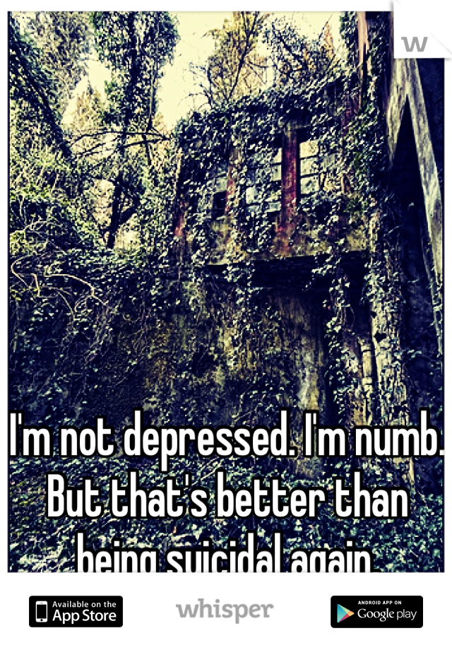I'm not depressed. I'm numb. But that's better than being suicidal again.