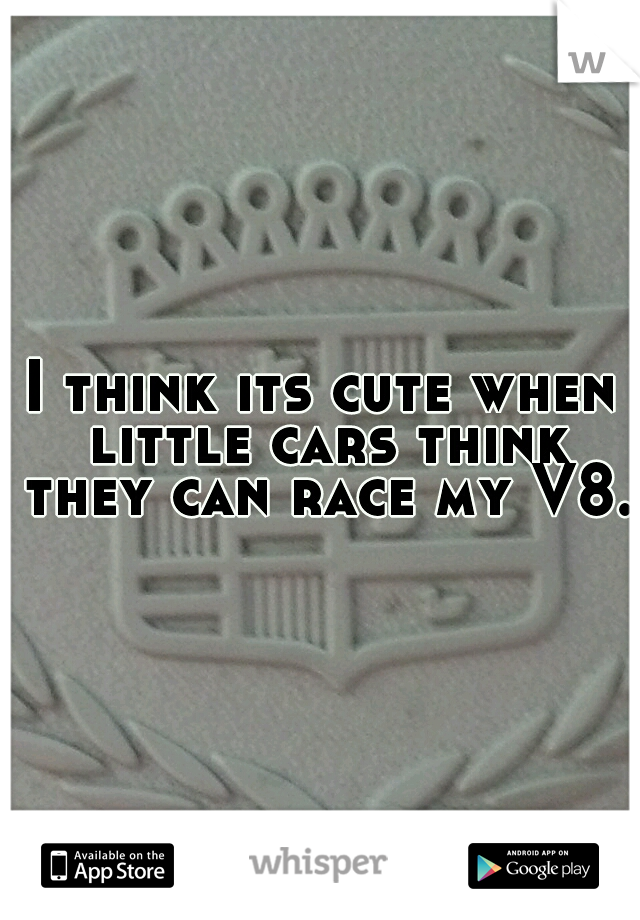 I think its cute when little cars think they can race my V8.