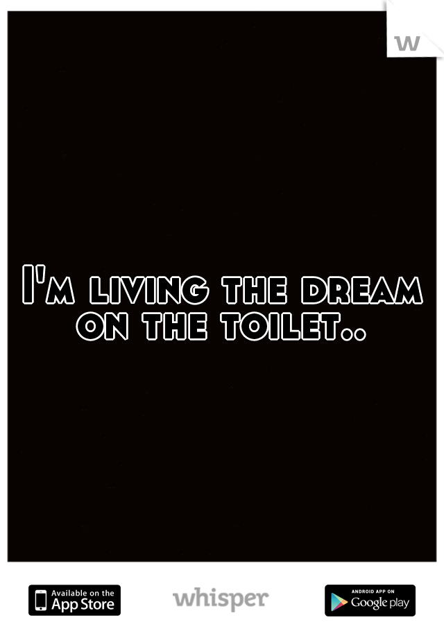 I'm living the dream on the toilet..