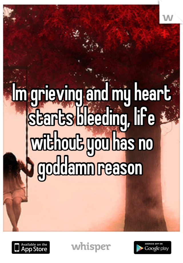 Im grieving and my heart starts bleeding, life without you has no goddamn reason