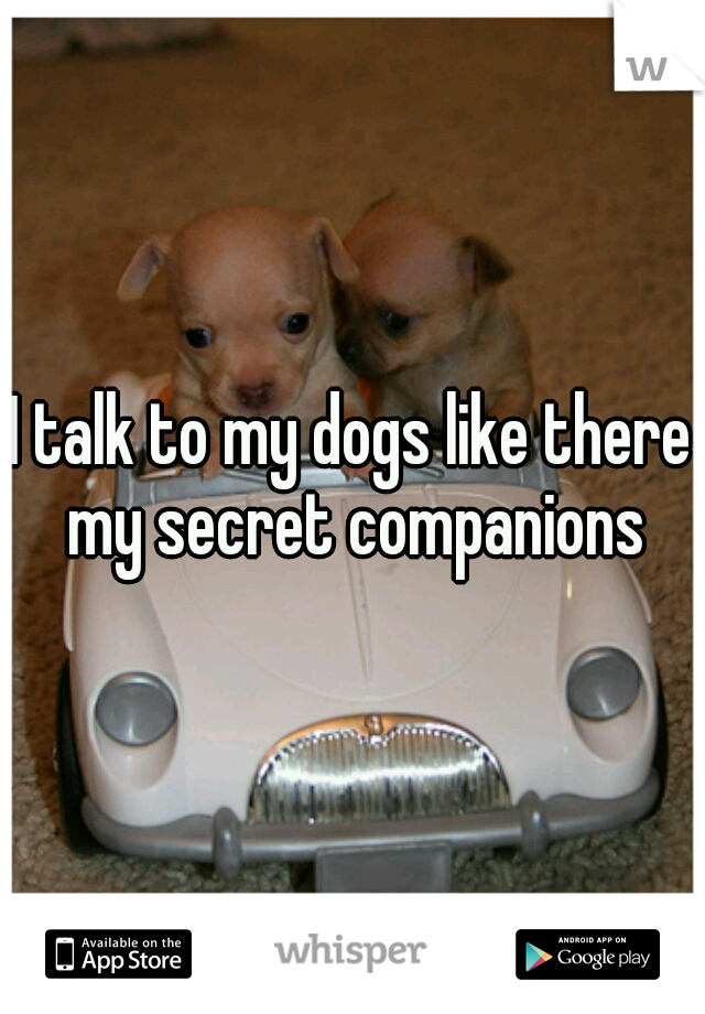 I talk to my dogs like there my secret companions