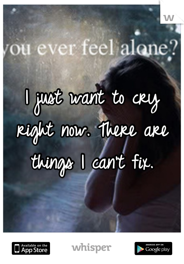 I just want to cry right now. There are things I can't fix.