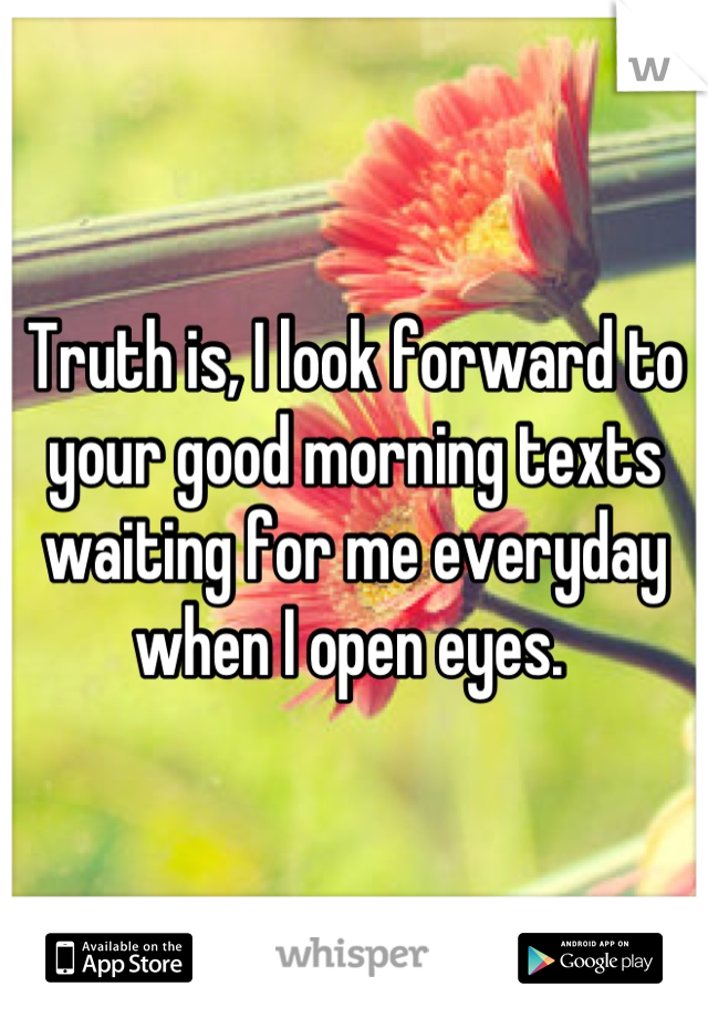 Truth is, I look forward to your good morning texts waiting for me everyday when I open eyes.