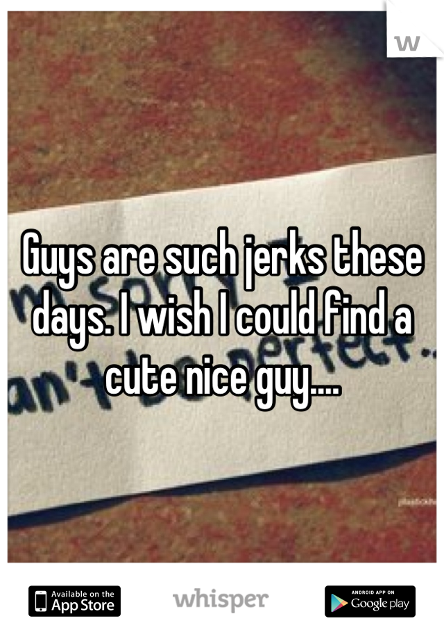 Guys are such jerks these days. I wish I could find a cute nice guy....