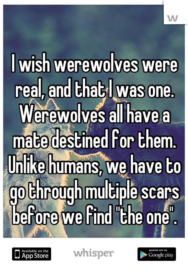 """I wish werewolves were real, and that I was one. Werewolves all have a mate destined for them. Unlike humans, we have to go through multiple scars before we find """"the one""""."""
