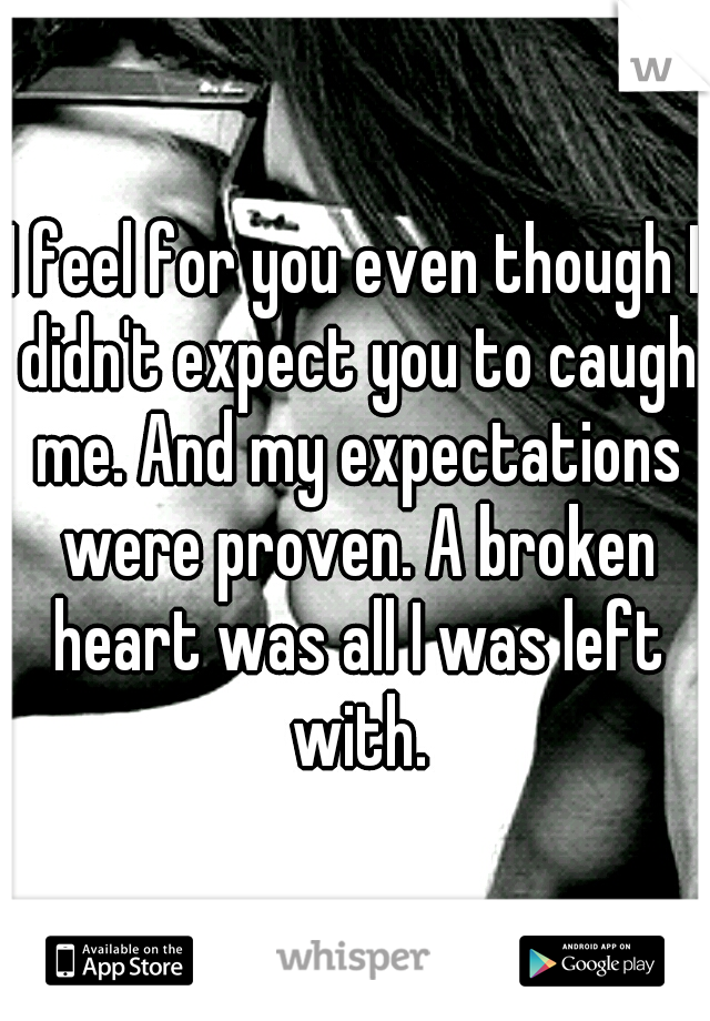 I feel for you even though I didn't expect you to caugh me. And my expectations were proven. A broken heart was all I was left with.