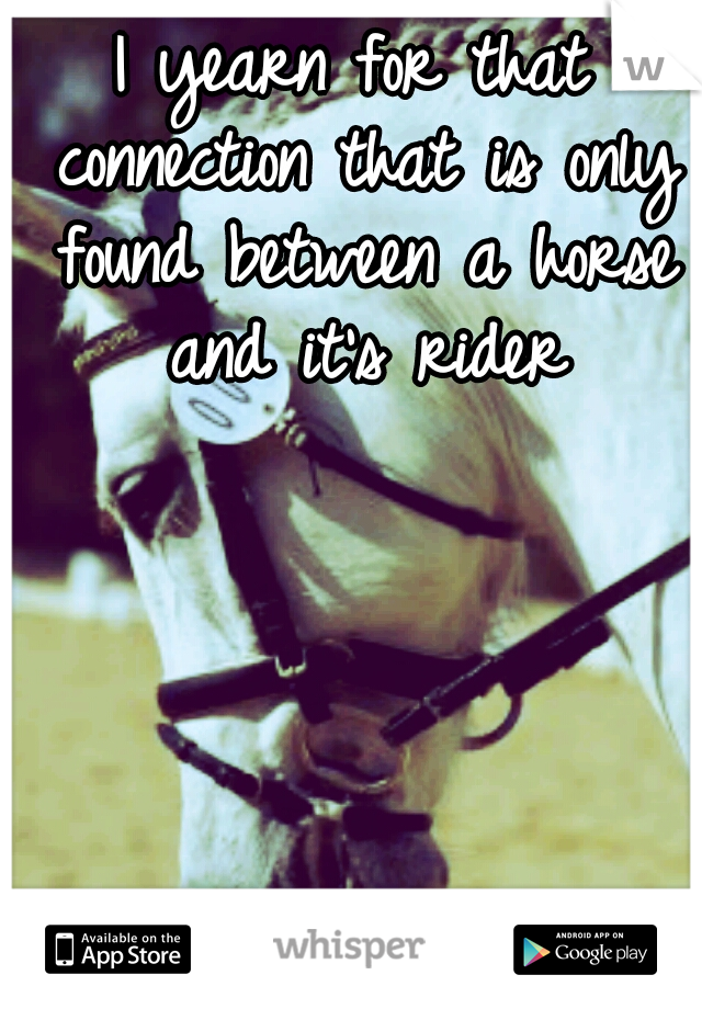 I yearn for that connection that is only found between a horse and it's rider