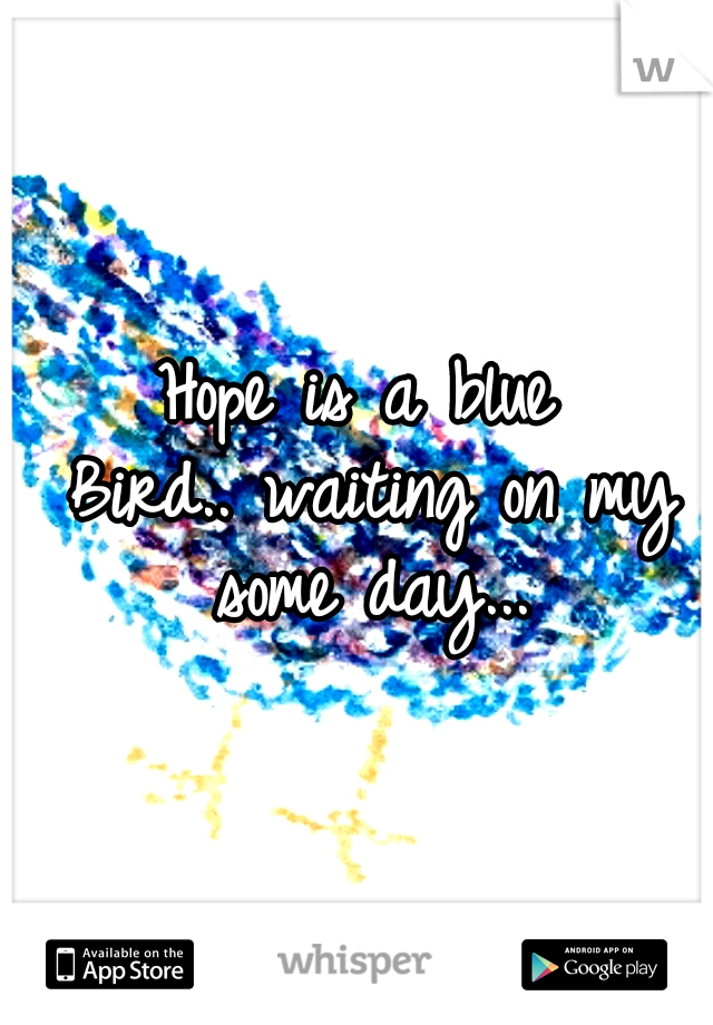 Hope is a blue Bird.. waiting on my some day...