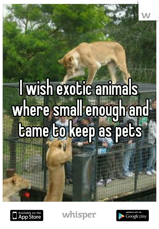 I wish exotic animals where small enough and tame to keep as pets