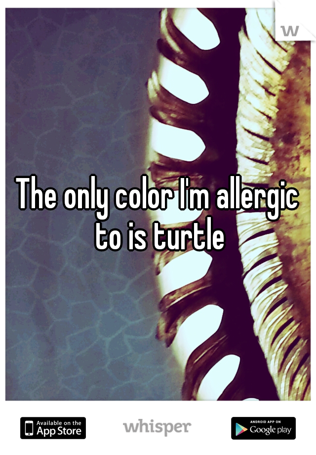 The only color I'm allergic to is turtle