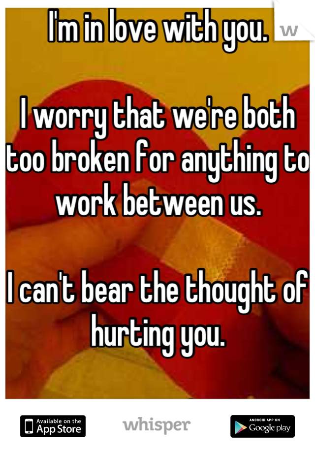 I'm in love with you.   I worry that we're both too broken for anything to work between us.   I can't bear the thought of hurting you.   You're perfect.