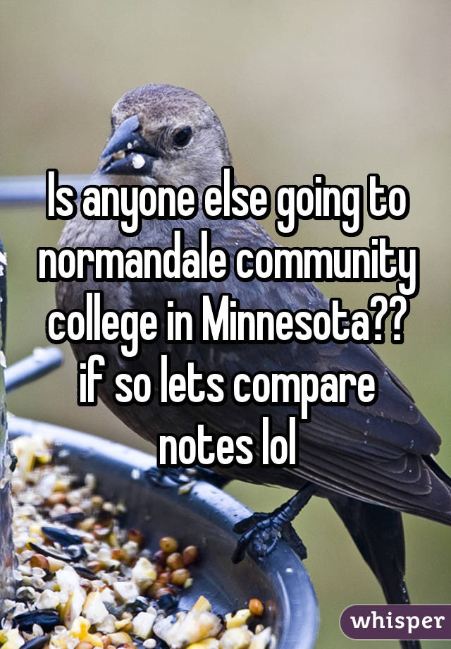 Is anyone else going to normandale community college in Minnesota?? if so lets compare notes lol