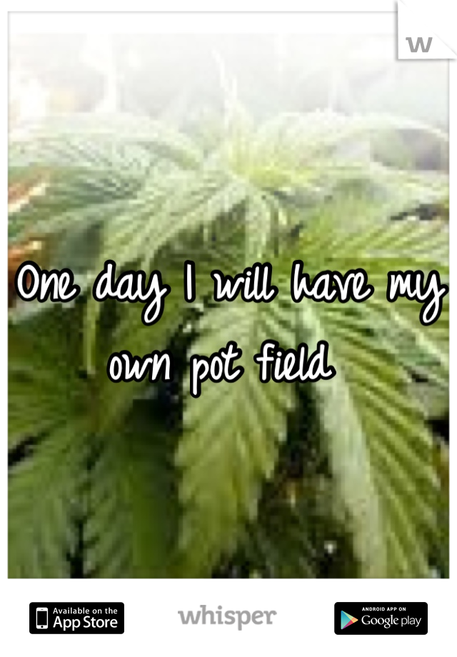 One day I will have my own pot field