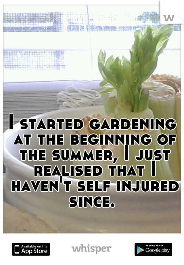I started gardening at the beginning of the summer, I just realised that I haven't self injured since.