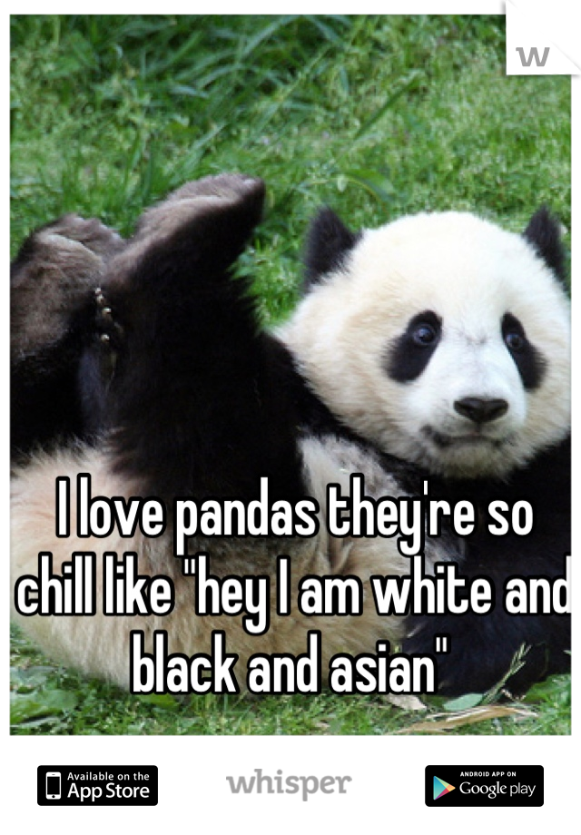 """I love pandas they're so chill like """"hey I am white and black and asian"""""""