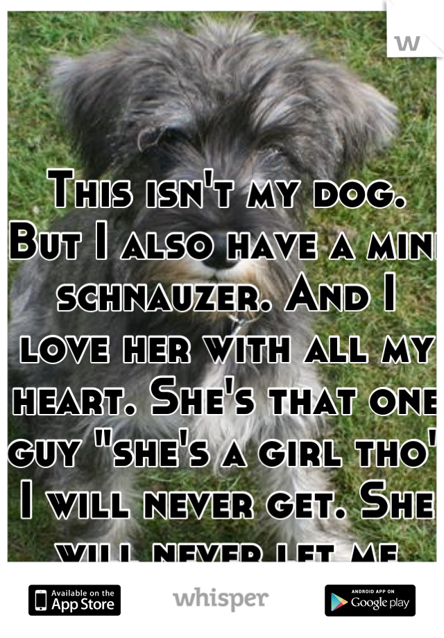 "This isn't my dog. But I also have a mini schnauzer. And I love her with all my heart. She's that one guy ""she's a girl tho"" I will never get. She will never let me down. (:"