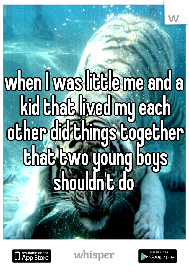when I was little me and a kid that lived my each other did things together that two young boys shouldn't do