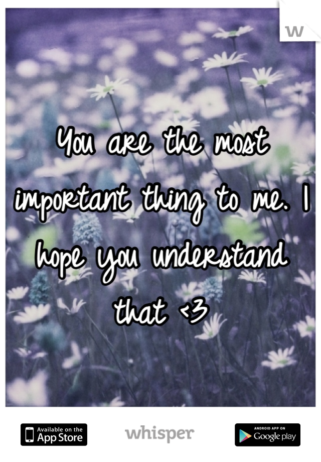 You are the most important thing to me. I hope you understand that <3