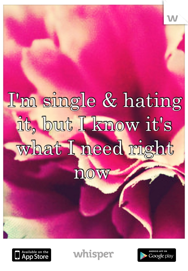 I'm single & hating it, but I know it's what I need right now