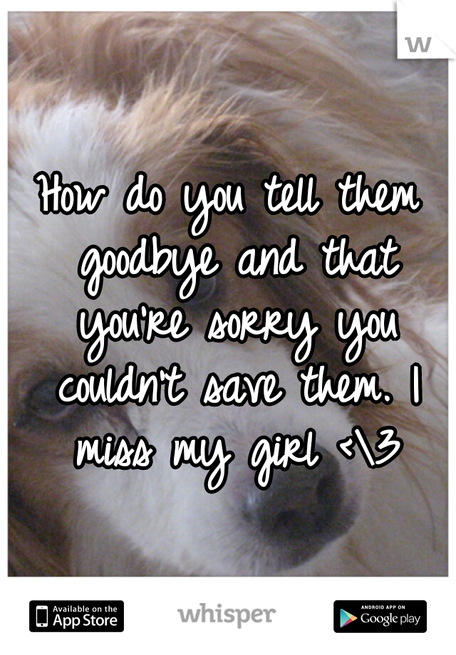 How do you tell them goodbye and that you're sorry you couldn't save them. I miss my girl <\3