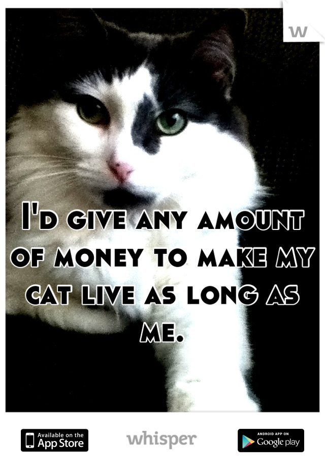 I'd give any amount of money to make my cat live as long as me.