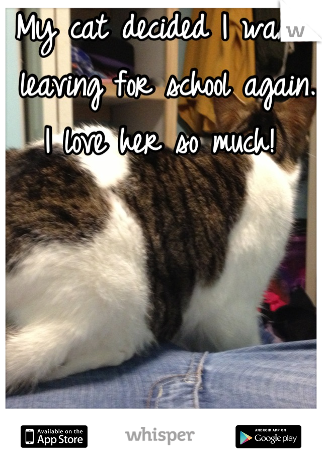 My cat decided I wasn't leaving for school again. I love her so much!