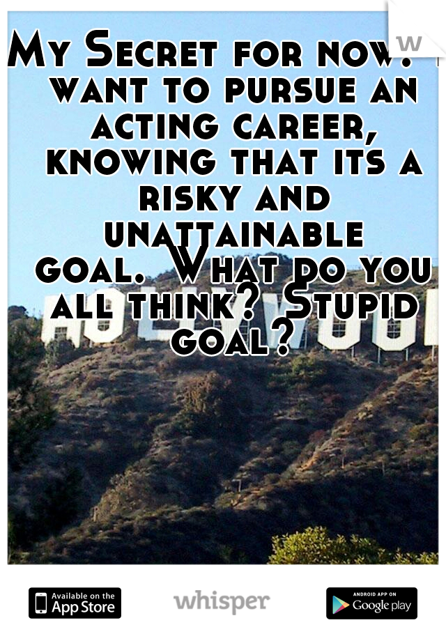 My Secret for now: I want to pursue an acting career, knowing that its a risky and unattainable goal. What do you all think? Stupid goal?
