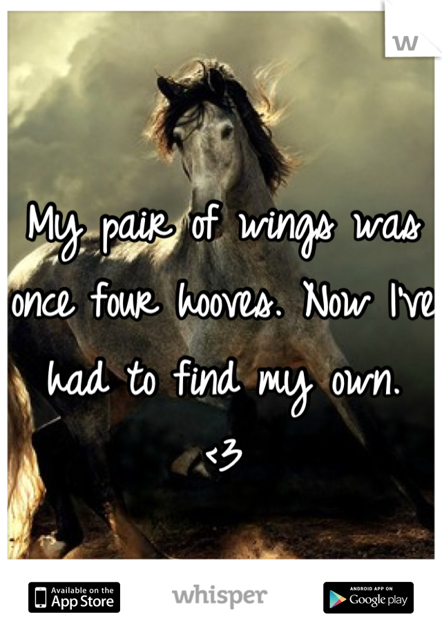 My pair of wings was once four hooves. Now I've had to find my own.  <3