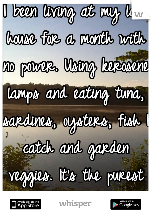 I been living at my lake house for a month with no power. Using kerosene lamps and eating tuna, sardines, oysters, fish I catch and garden veggies. It's the purest and best feeling ever!