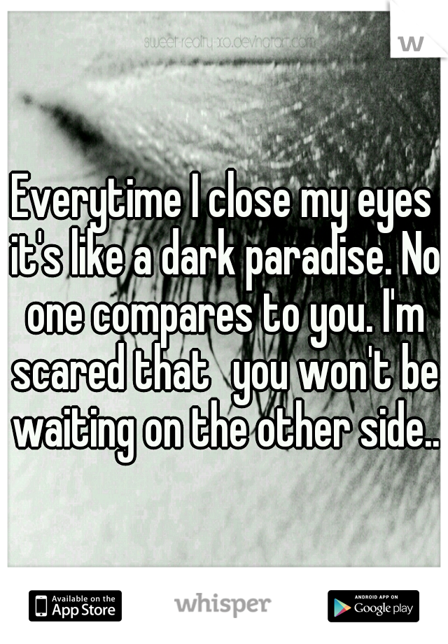 Everytime I close my eyes it's like a dark paradise. No one compares to you. I'm scared that you won't be waiting on the other side...