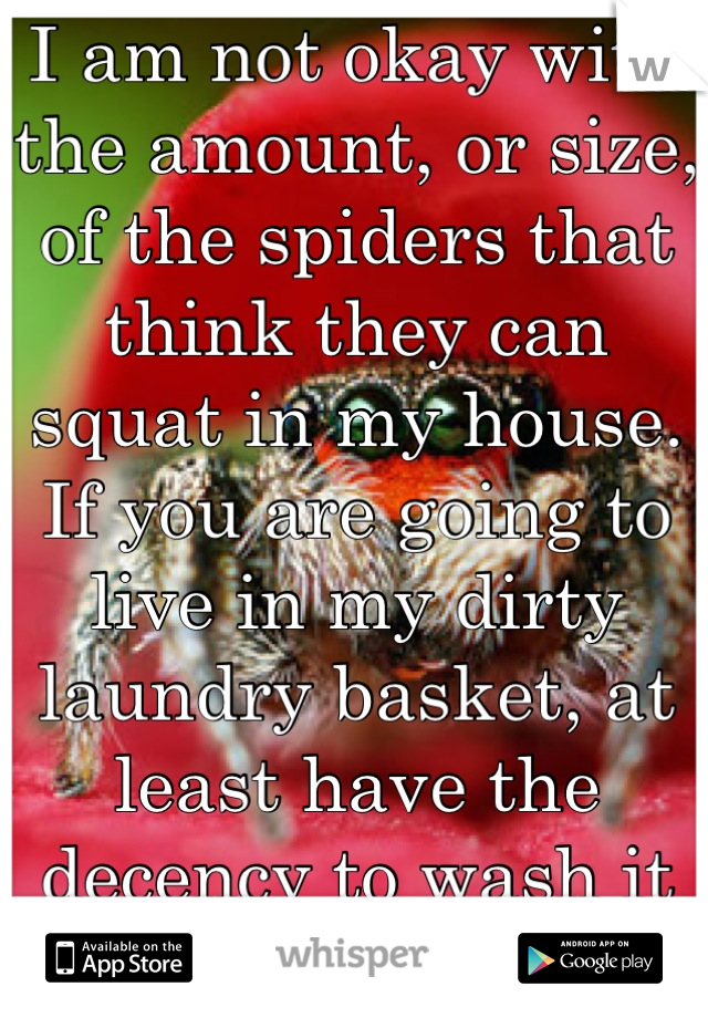 I am not okay with the amount, or size, of the spiders that think they can squat in my house. If you are going to live in my dirty laundry basket, at least have the decency to wash it for me.  Asshole