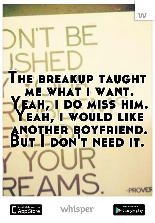 The breakup taught me what i want. Yeah, i do miss him. Yeah, i would like another boyfriend. But I don't need it.