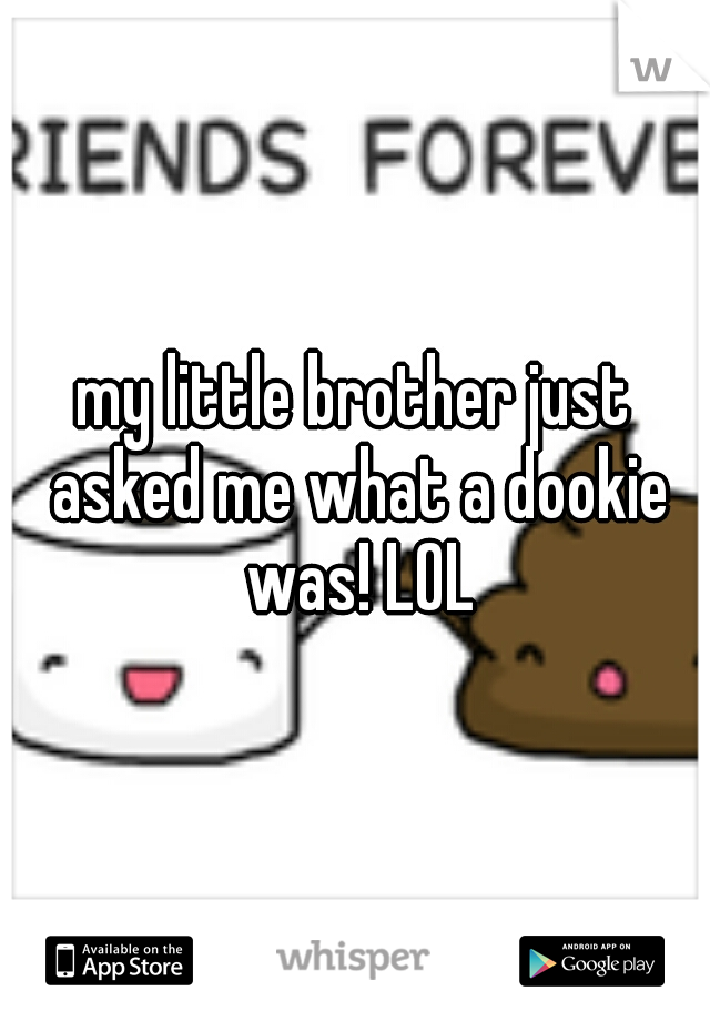 my little brother just asked me what a dookie was! LOL