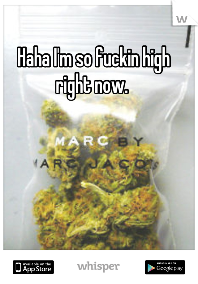 Haha I'm so fuckin high right now.