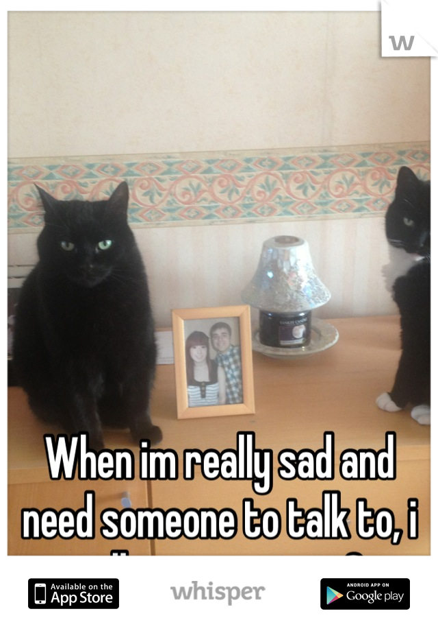When im really sad and need someone to talk to, i talk to my cats <3