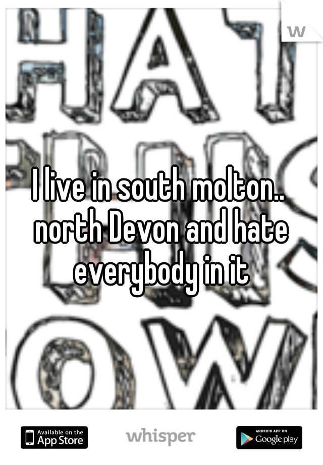 I live in south molton.. north Devon and hate everybody in it