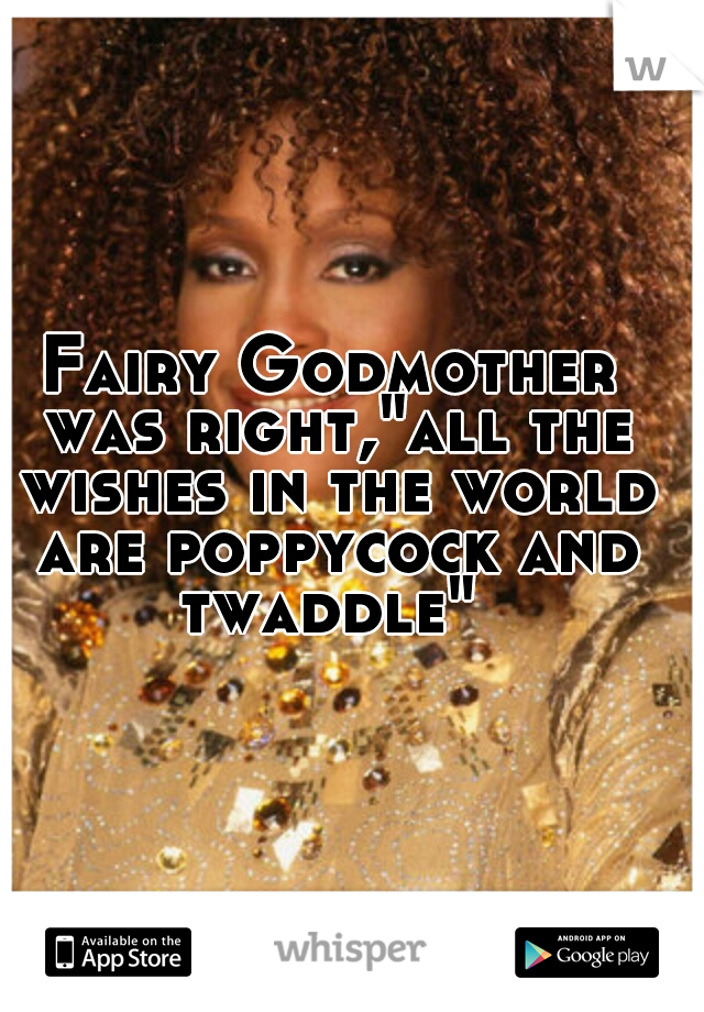"""Fairy Godmother was right,""""all the wishes in the world are poppycock and twaddle"""""""