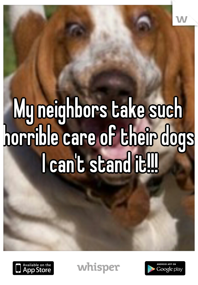 My neighbors take such horrible care of their dogs. I can't stand it!!!