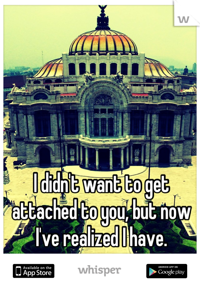 I didn't want to get attached to you, but now I've realized I have.