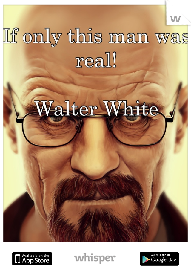 If only this man was real!   Walter White