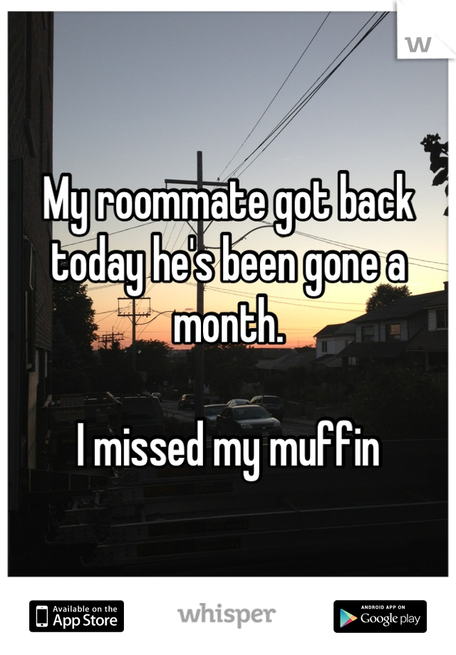 My roommate got back today he's been gone a month.   I missed my muffin
