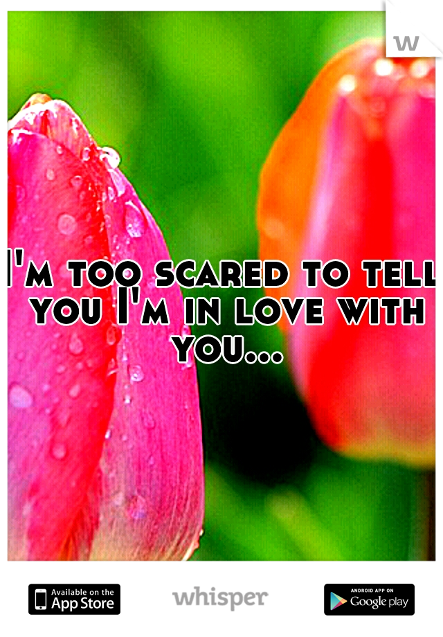 I'm too scared to tell you I'm in love with you...