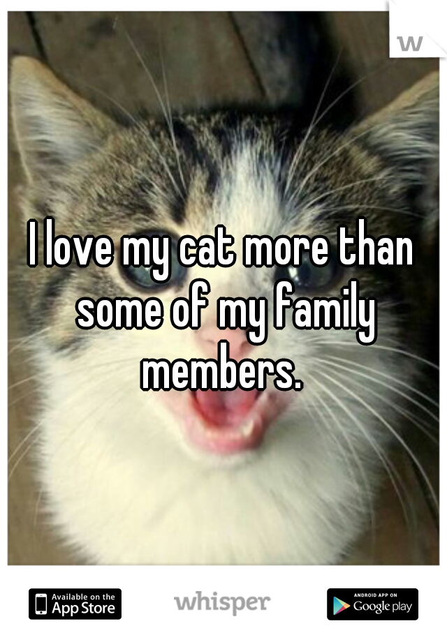 I love my cat more than some of my family members.