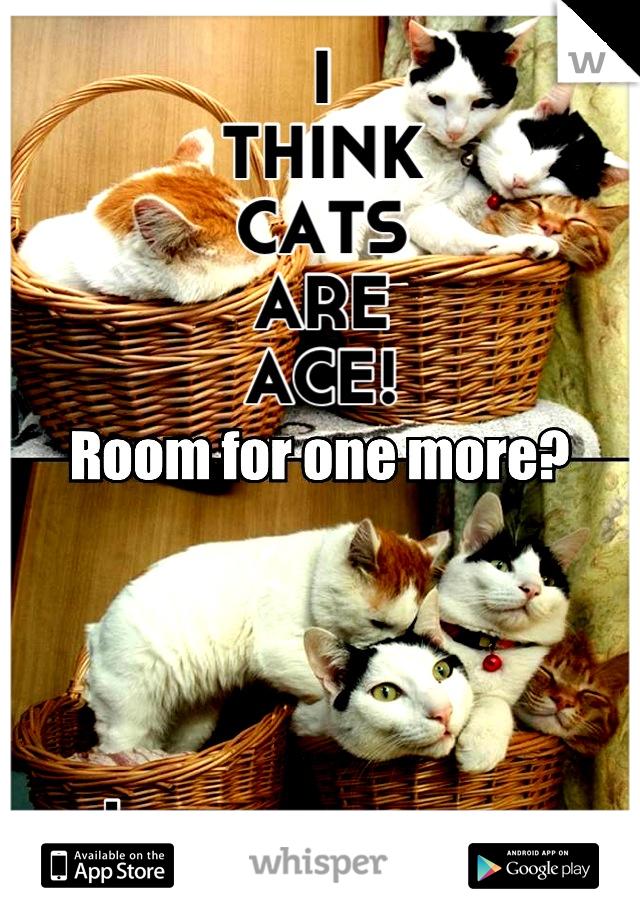 I THINK CATS ARE ACE!      I like dogs too